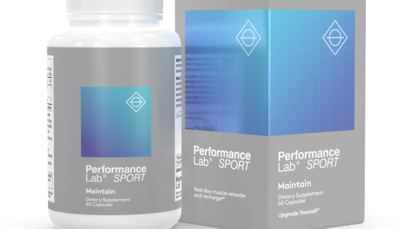 Performance Lab Maintain Review 2020