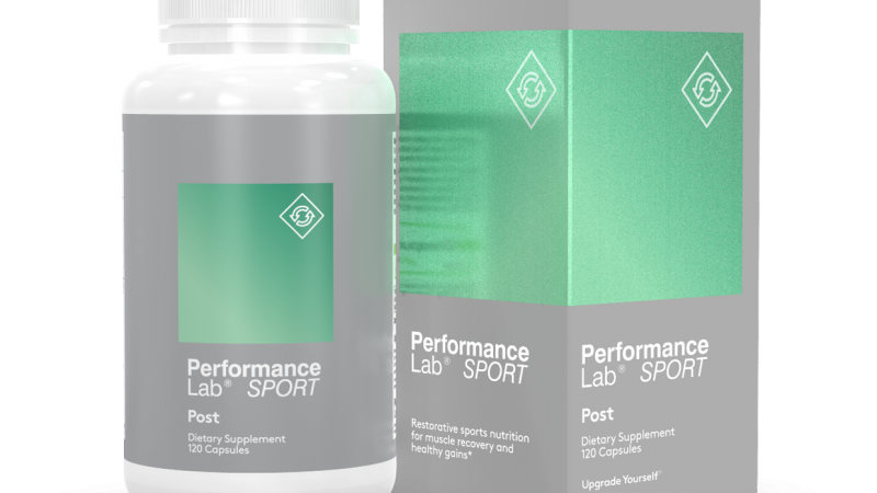 Performance Lab Post Review 2020